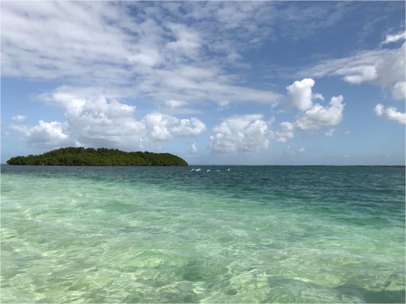 plage iles eau turquoise guadeloupe