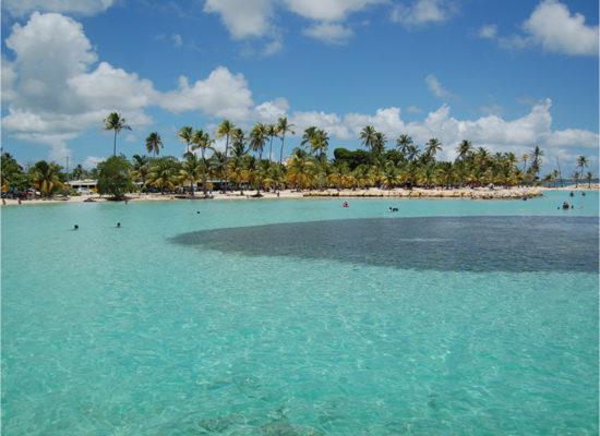 plage eau turquoise palmier